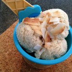 Low Carb Coconut & Cardamom Ice-Cream